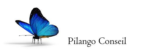 Pilango Conseil Logo